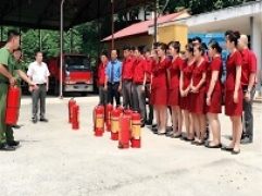 Cán bộ, nhân viên Tập đoàn Kim Tín tập huấn